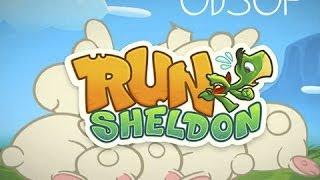 Обзор игры Run Sheldon.
