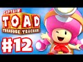 Captain Toad: Treasure Tracker - Gameplay Walkthrough Part 12 - Toadette's Tribulations! 100%