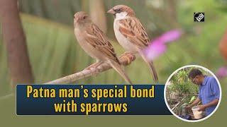 Video - Patna के आदमी का Sparrows से Special रिश्ता