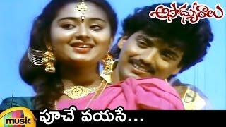 Ilayaraja Hit Songs | Poochey Vayase Video Song | Asadyuralu Telugu Movie | Mango Music - MANGOMUSIC
