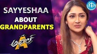 Sayyeshaa Saigal about grandparents Dilip Kumar & Saira Bhanu    Talking Movies with iDream - IDREAMMOVIES
