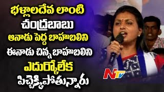 MLA Roja Sensational Comments on Chandrababu Naidu || Power Punch || NTV - NTVTELUGUHD