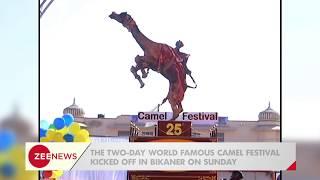 Rajasthan: Get a glimpse of 25th International Camel Festival organised in Bikaner - ZEENEWS