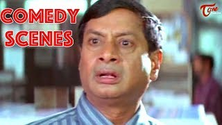 M S Narayana Back 2 Back Comedy Scenes - NavvulaTV - NAVVULATV