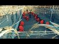 survivre en Guantanamo top films 2017 film compl?te fran?ais