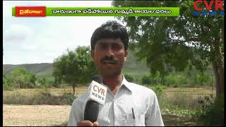 Pumpkin Cultivation in Nellore | Farmers Huge Loss on Pumpkin Cultivation | Raithe Raju | CVR NEWS - CVRNEWSOFFICIAL