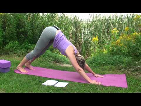 Namaste Yoga 99 Yoga of Emotions Compassion with Dr. Melissa West