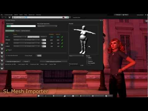 Import a Rigged Mesh