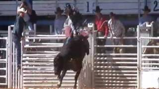 Auto Horse Racing Rodeo Bull Riding on Youtube   Rodeo   Youtube