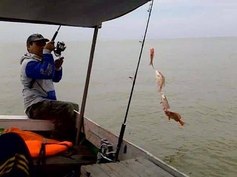 Trip Akbar 5 Samarinda Fishing Club 2014 | Parade strike kakap merah