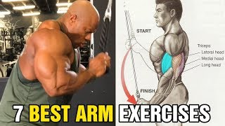 7 Exercises to Build Bigger Arms7 Exercises to Build Bigger Arms