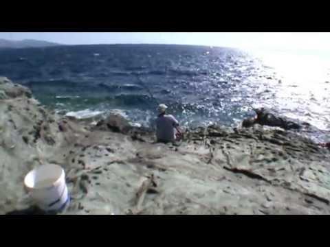 Απίκο στα βράχια με Ζυμάρι - Pole Fishing on the Rocks