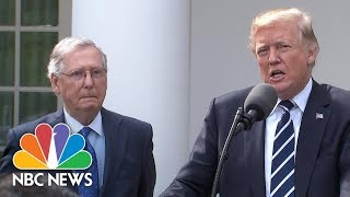 Donald Trump And Mitch McConnell Tout 'Outstanding' Relationship At WH Press Conference | NBC News - NBCNEWS