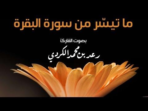ما تيسر من سورة البقرة بصوت رعد بن محمد الكردي