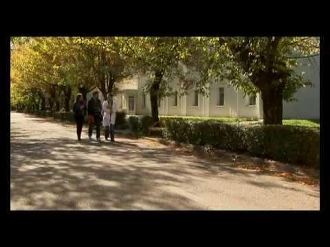 Филмови о Институту