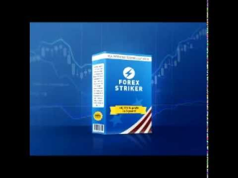 Forex Striker Viral Video  Homer Free