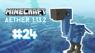 Minecraft Aether 1.3.2 : #24 - TO the NETHER