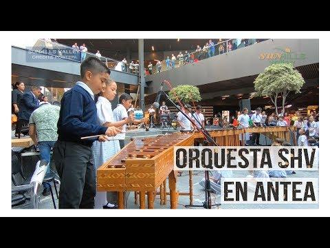 Orquesta SHV en Antea