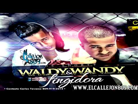 Waldy y Wandy - Fingidora [NEW SOUND 2013]