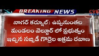 సబ్సీడీ గొర్రెల అక్రమ రవాణా | Sheep's Illegal Transport At Uppununthala | Nagar Kurnool | CVR NEWS - CVRNEWSOFFICIAL