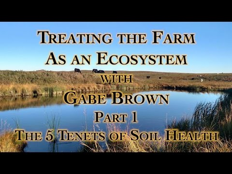 Treating the Farm as an Ecosystem with Gabe Brown Part 1, The 5 Tenets of Soil Health