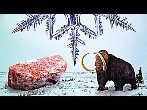 The Story of Frozen Food [video]