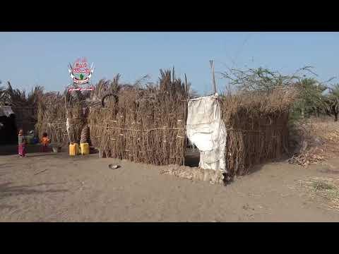 تهجير قسري للعائلات من منطقة الجبلية إلى المتينة .. شعار الموت الحوثي يقتل الحياة في التحيتا