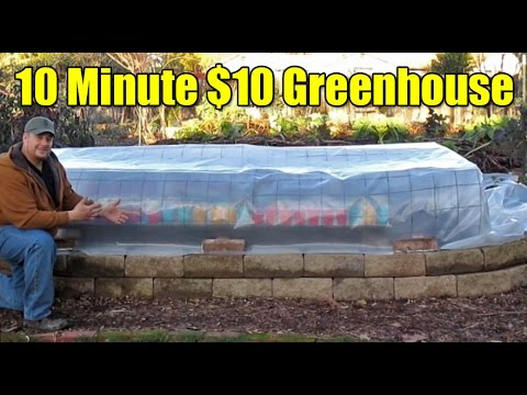 The 10 Minute $10 Greenhouse!