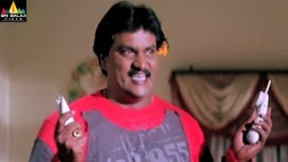 Andhrudu Movie Comedy Scenes Back to Back   Gopichand, Sunil   Sri Balaji Video - SRIBALAJIMOVIES