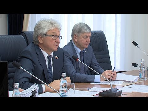 Депутаты Воронежской городской Думы думают о будущем
