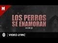 Los Perros Se Enamoran [Remix] [LIRYC + AUDIO ] - Andy Rivera Ft Nicky Jam y Varios Artistas