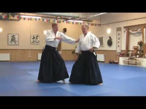 Aikido Teaching Video - Principles and Perspectives - Preview video - Alignment