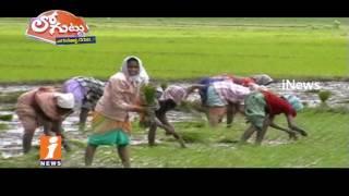 Farmers Fears On Fake Seeds In Guntur | Loguttu | iNews - INEWS