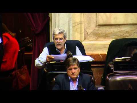 Jorge Cardelli Diputado Nacional de Proyecto Sur en la sesión sobre fertilización asistida