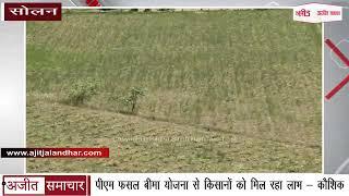 video : Solan - पीएम फसल बीमा योजना से Farmers को मिल रहा Benefit - कौशिक