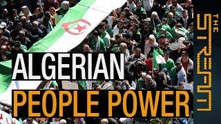 🇩🇿 How is Algeria's popular movement changing the country? | The Stream - ALJAZEERAENGLISH