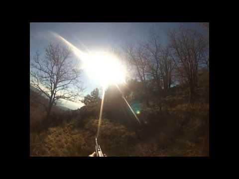 hunting wild boar - video caccia al cinghiale - abbatimento contro sole