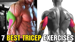 7 Best Tricep Exercises For Bigger Arms