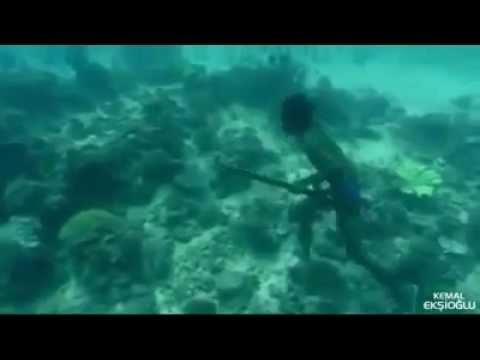 Denizde Yaşayan İnsanlar Bajaular
