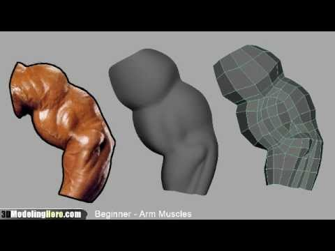 How to Model Arm Muscles - Low Poly Beginner 3D Modeling Tutorial