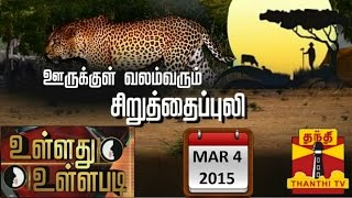 "Ullathu Ullapadi 04-03-2015  ""Movements of Man-Eating Leopard Scares Hillside Village People"" – Thanthi Tv Show"