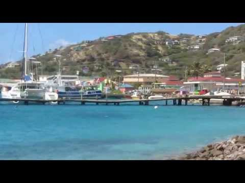 SHARKS in St Vincent and the Grenadines