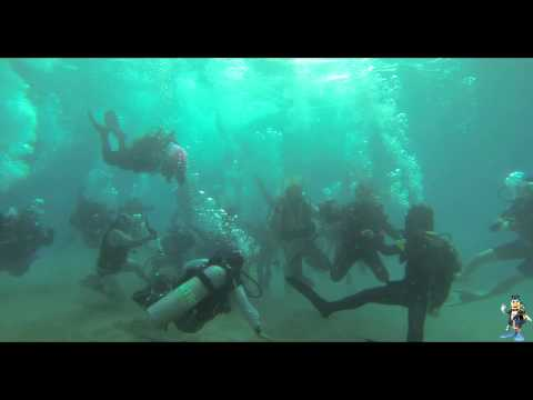 Harlem Shake (Best Original Scuba Dive) - UNDERWATER