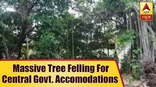 South Delhi: Massive tree felling for redevelopment of central govt accommodations - ABPNEWSTV