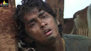 Nuvvostanante Nenoddantana Movie Scenes | Narsing Yadav Teasing Siddharth | Sri Balaji Video - SRIBALAJIMOVIES
