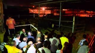 محافظ الإسكندرية يستقبل 545 رأس عجل منحة إماراتية