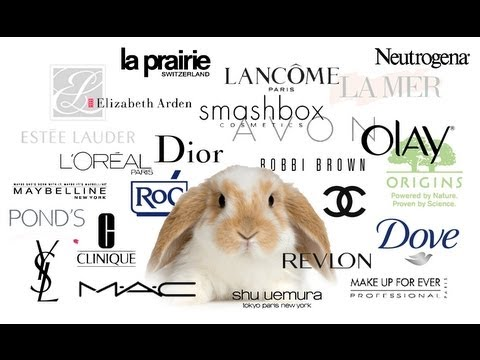 ANIMAL TESTING - MAKEUP COMPANIES AND THE EU BAN
