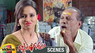 Sana Khan Tempts an Old Man | Gajjala Gurram Telugu Movie Scenes | Suresh Krishna | Mango Videos - MANGOVIDEOS