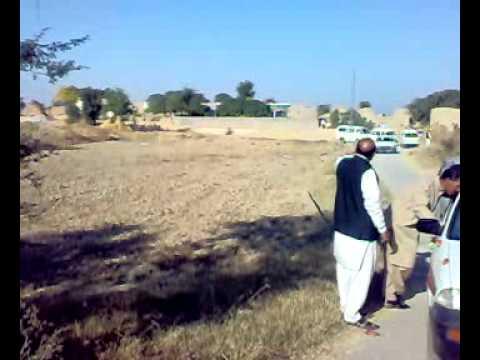 wanhar shahid shadi