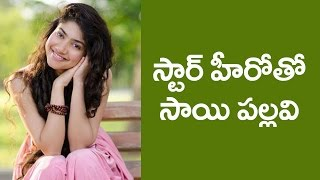 Premam Sai Pallavi to romance a Star Hero - IGTELUGU